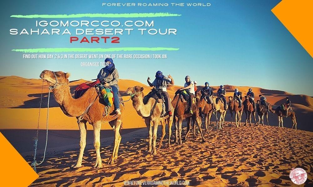 forever roaming the worlds review of Igomorocco.com tour of the sahara desert part 2