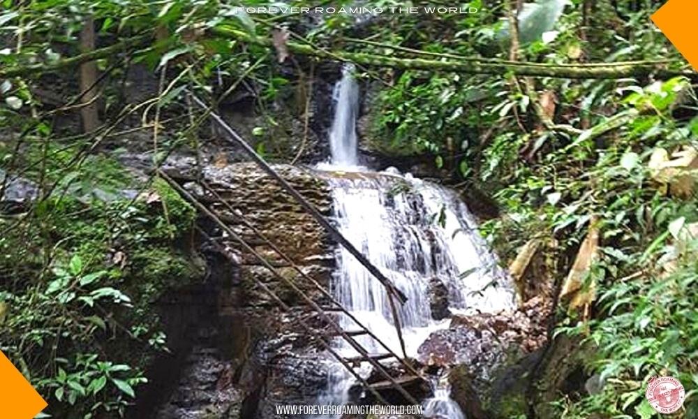 San gil jungle blog post - Forever Roaming the World - Pic 5