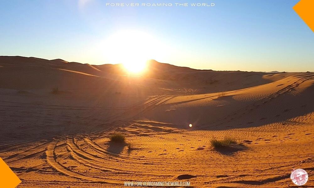 Amazing Sahara desert tour with IGoMorocco - part 2 2