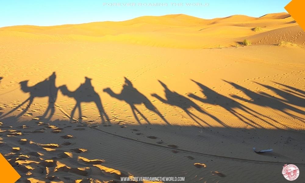 IGoMorocco Sahara desert tour pt 2 blog post - Forever Roaming the World - Pic 9